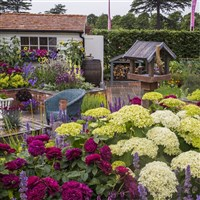 Hampton Court Flower show...from £205pp