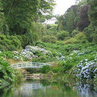 Cornwall's Garden Autumn Colours......from £429pp