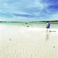 Isles of Scilly and Abbey Gardens......from £599pp